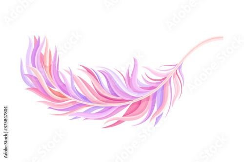 Fototapeta Purple Bird Feather with Nib as Avian Plumage Vector Illustration