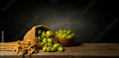 Beer. Still life with Vintage beer barrel and glass light beer. Fresh amber beer concept. Green hop and gold barley on wooden table. Ingredients for brewery. Brewing traditions