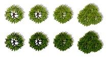 Set Of Green Leaves, Set Of Wa...