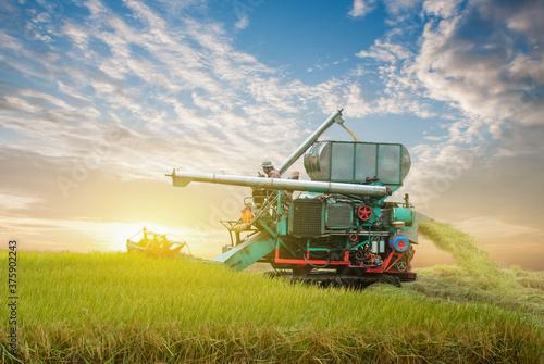 combine harvester working on a field Billede på lærred