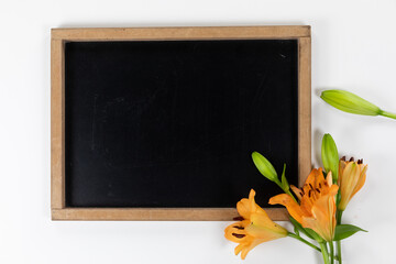 View of a black board with orange flowers on white background