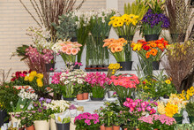 A Large Variety Of Different Flowers On A Flower Stall In A Market In The Netherlands. Combination Of Color And Texture Expressed In A Flower, Beauty Of Nature