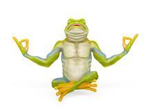 Frog Is Doing Yoga