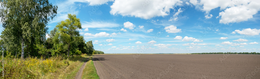 Fototapeta Summer rural panoramic landscape with blue sky with beautiful clouds over the country road and plowed field