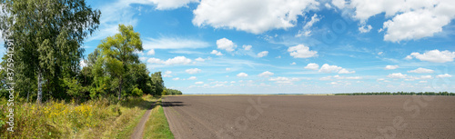 Summer rural panoramic landscape with blue sky with beautiful clouds over the co Wallpaper Mural