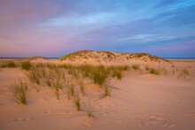 Grass Growing From Sand Dunes At Sunset