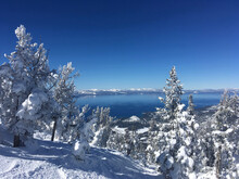 View Of Lake Tahoe  Framed By Snow Covered Trees From High Up On Heavenly Ski Resort, Lake Tahoe, California And Nevada