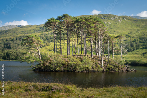 Photo Eilean Na Moine islet at Loch Eilt, Scotland, UK
