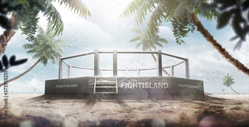 Fotografering MMA arena on the fight island