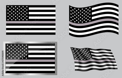 Fotografie, Obraz Thin Gray Line Corrections Flag