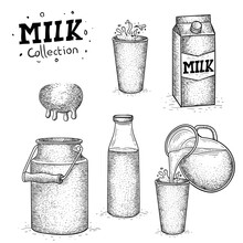 Vector Milk Collection, Milk Illustration In Hand Drawn Style