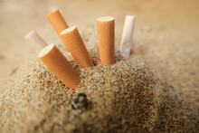 Isolated Used Cigarette Butts ...
