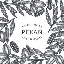 Hand Drawn Pecan Branch And Ke...