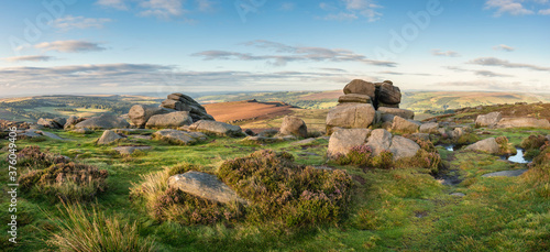 Obraz Epic colorful landscape view of late Summer heather in Peak District around Higger Tor at sunrise - fototapety do salonu