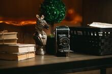 Old Camera And Zebra Figurine