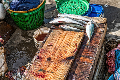 Fotografie, Obraz A wooden table for processing and preparing freshly caught fish.