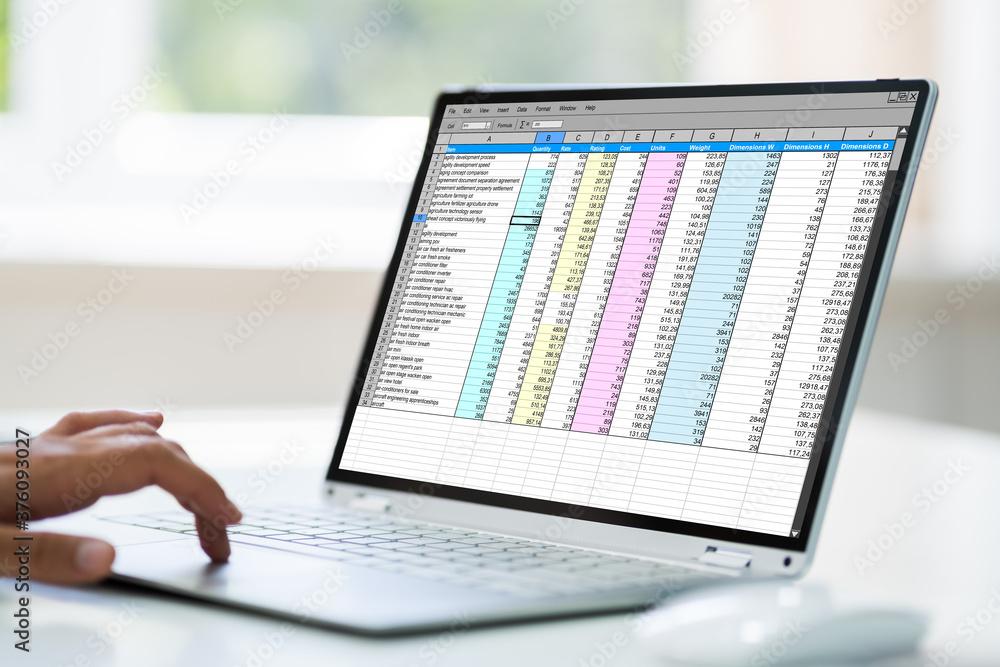 Fototapeta Computer Spreadsheet. Analyst Employee Working