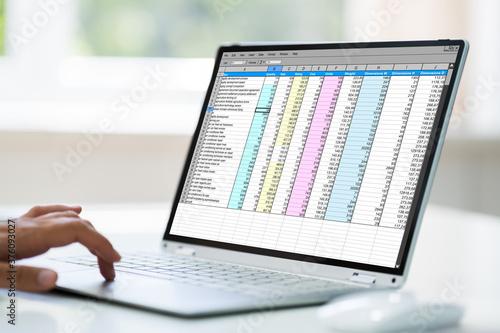 Computer Spreadsheet. Analyst Employee Working