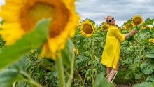 Smiling Girl In A Yellow Dress Young On The Background Of A Field With Sunflowers On A Summer Day