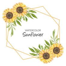 Sunflower Watercolor Illustrat...