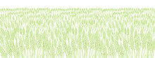 Cereal Field. Leaves And Ears Of Wheat. Agriculture Straw. Horizontal Banner Background. Green Grass Meadow. Contour Vector Line. Bread Wrapper.