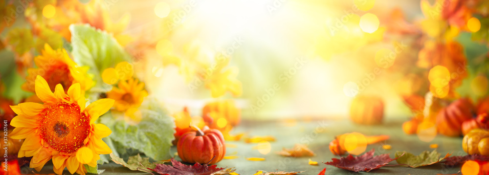 Fototapeta Autumn festive background with sunflowers, pumpkins and fall leaves. Concept of Thanksgiving day or Halloween with copy space - obraz na płótnie