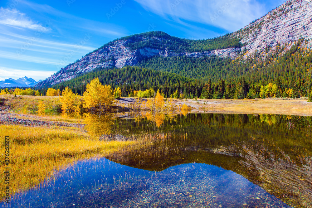 Fototapeta Yellow and orange colors of autumn