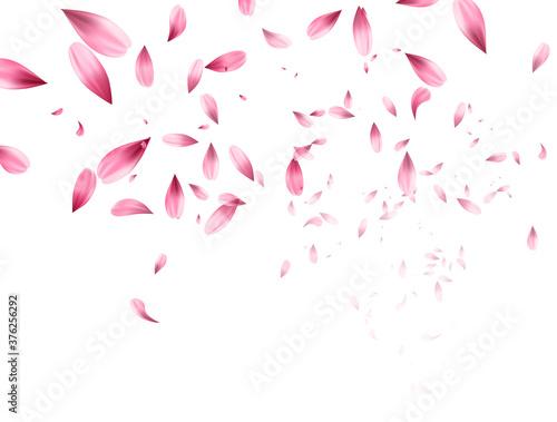 Pink sakura falling petals background. Vector illustration Fotobehang
