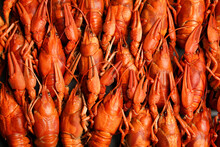 Delicious Boiled Crayfishes As...
