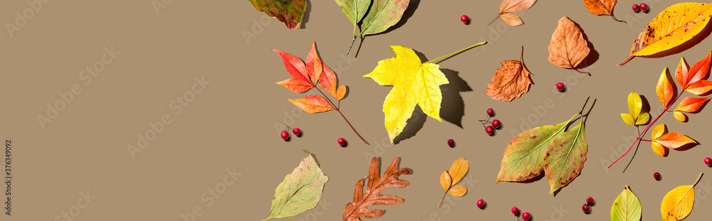 Fototapeta Colorful autumn leaves overhead view - flat lay