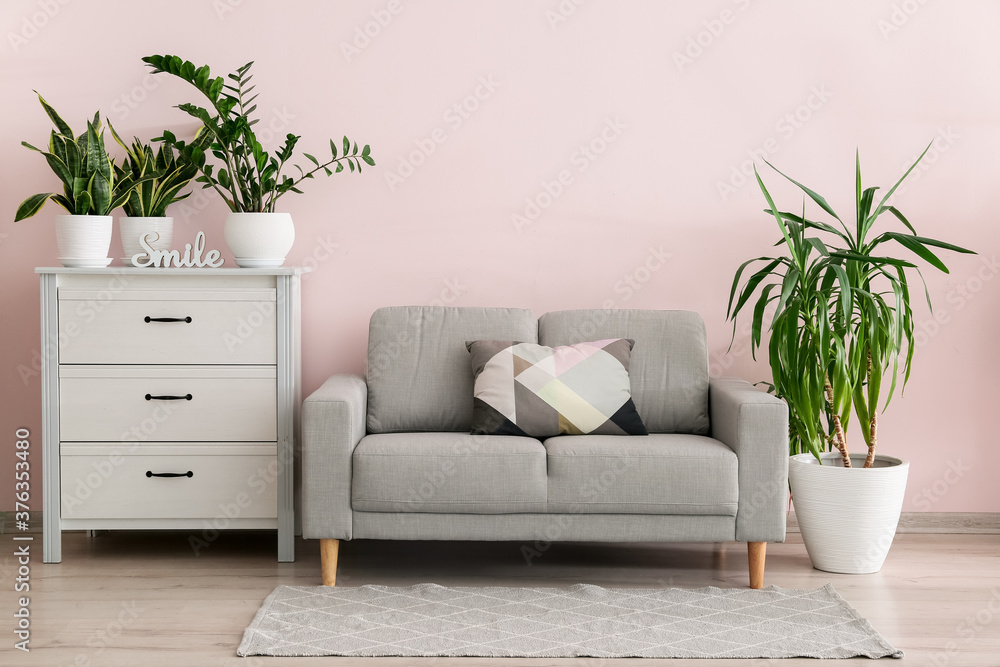 Fototapeta Interior of modern room with green houseplants