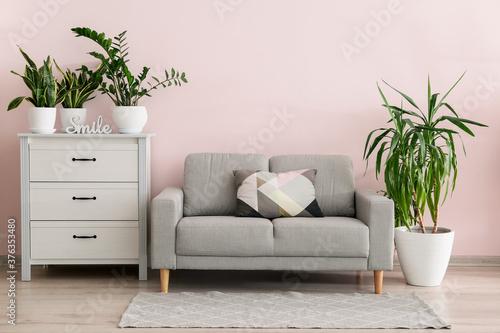 Fototapeta Interior of modern room with green houseplants obraz