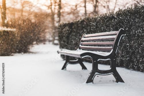 Panchina in un parco e tempo nevoso Fototapet
