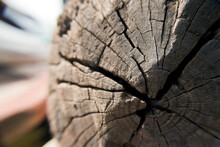 Koliwada, Maharashtra / India - October 06, 2006 : A Close-up View Of The Piece Of Wood In The Village.