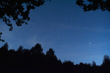 The Night Sky Is Framed By Dar...