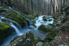A Mossy Waterfall Along A Mountain Stream. Sureanu Mountains, Carpathians, Romania