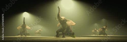 Papel de parede elephant in the desert towards an oasis