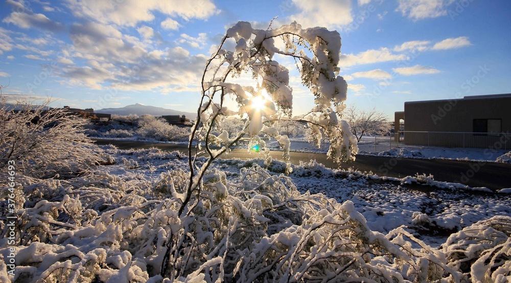 Fototapeta Lever de soleil en hiver, neige, paysage enneigée