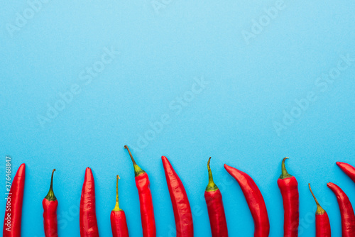 top view of spicy red chili peppers on blue background with copy space Fotobehang