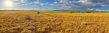 Pickup Truck On Fire Road 182 Exploring Prairie Grassland Near Drake In The Prescott National Forest, Arizona