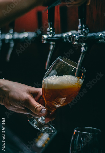 bartender hand at beer tap pouring a draught beer in glass serving in a restaura Wallpaper Mural