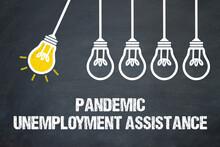 Pandemic Unemployment Assistan...