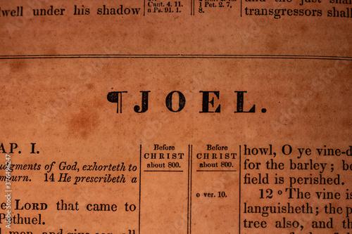 Платно Joel