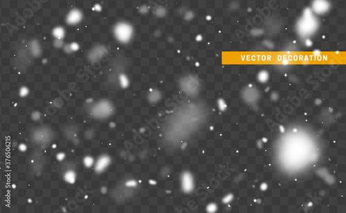 Obraz Falling white glare of snow isolated on transparent background. Texture winter snowflakes. Light effect white. vector illustration - fototapety do salonu