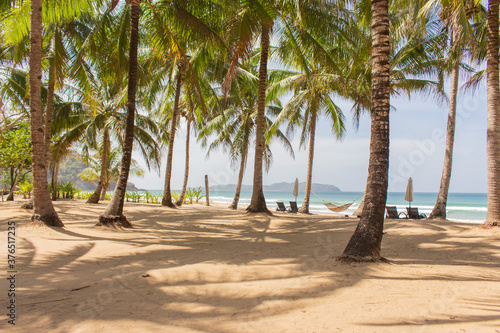 Scenic tropical beach with palm trees, hammock and chairs Wallpaper Mural