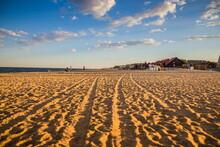 Beautiful Evening Beach. Shado...
