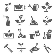 Gardening, Plants Growing Bold Black Silhouette Icons Set Isolated On White. Pomiculture, Orcharding.