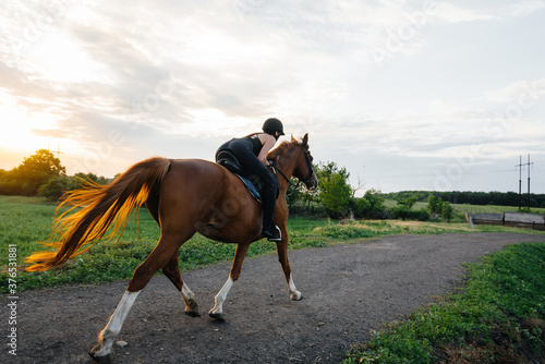 Obraz na plátne A young pretty girl jockey riding a thoroughbred stallion is engaged in horse riding at sunset