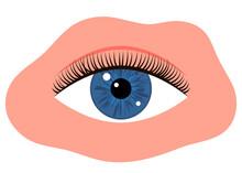 Eye With Black Long Eyelashes....