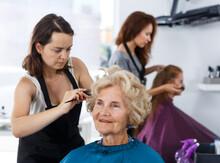 Skilled Woman Hairdresser Maki...